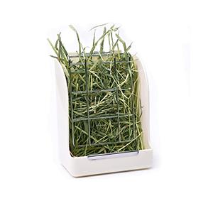 Best Rabbit Hay Feeder / Rack