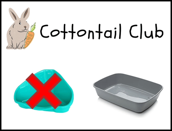 What litterbox should a rabbit use?