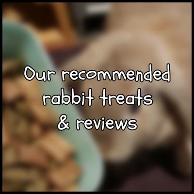 Recommended Rabbit Treats