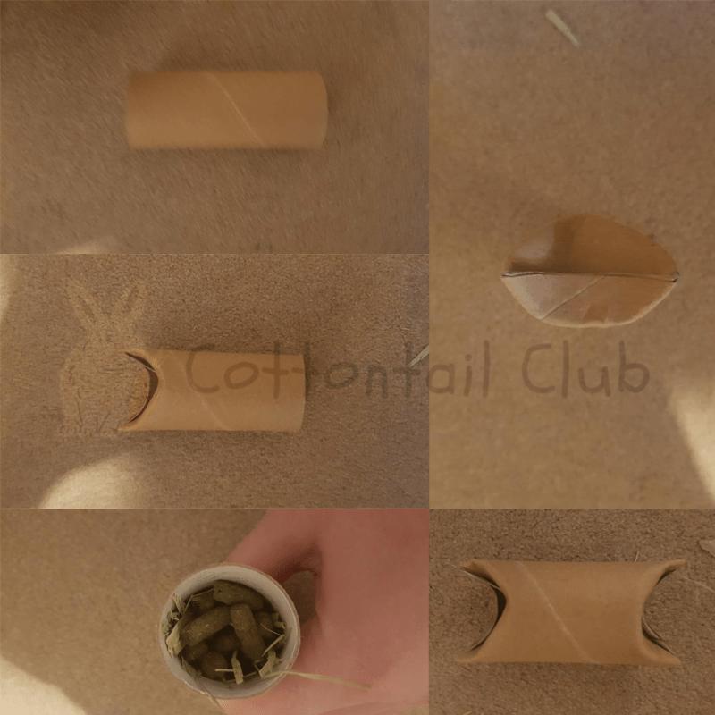 How to make a rabbit toilet tube
