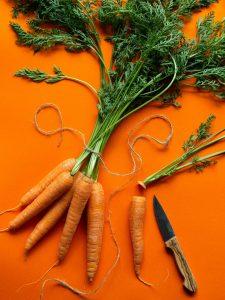 Can rabbits eat carrots?